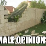 male opinions
