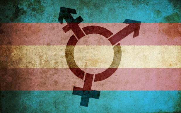 Transactivismo y feminismo radical (radfem): guerra abierta
